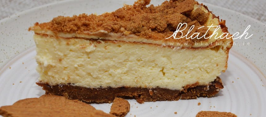 Fluffy Spiced Cheesecake