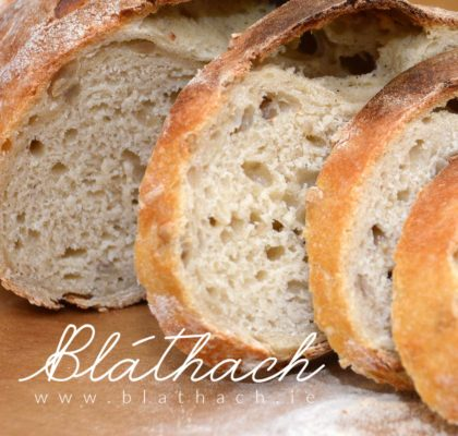 sourdough beer bread