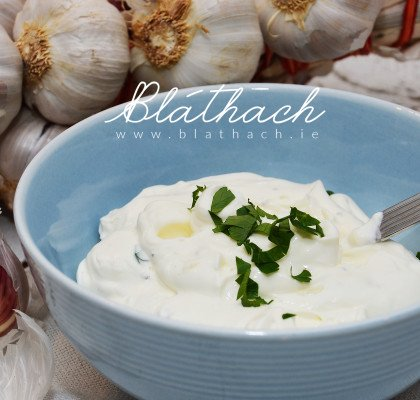yogurt garlic dip