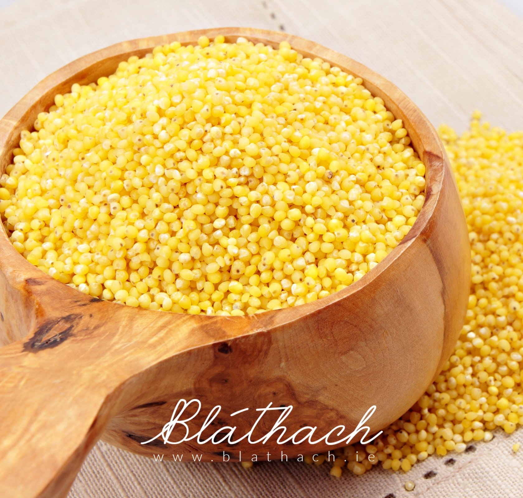 How To Cook Millet Perfectly